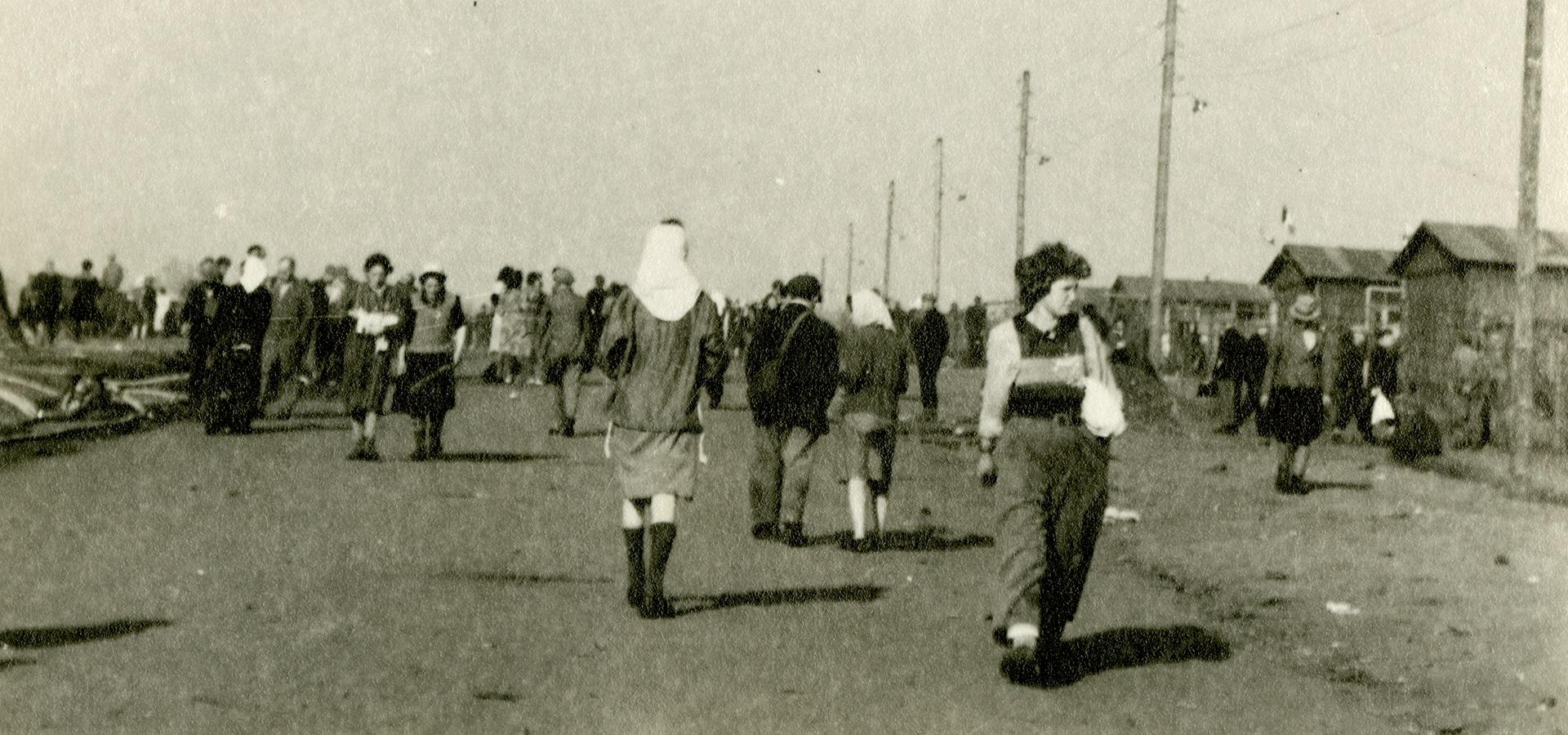 SAHGF Archive Page